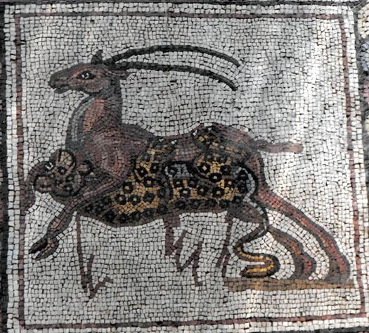 http://www.judaea.ru/images/For_articl/2009/Mozaika_v_Lode/Lod_MK_16.jpg
